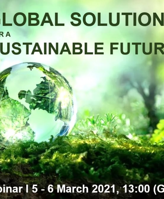 Global Solutions for a Sustainable Future